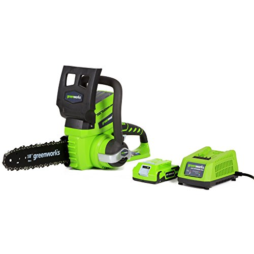 Greenworks 24V 10-Inch Cordless Chainsaw, 2Ah Battery and Charger Included, 20362