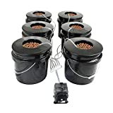 HTG Supply Bubble Brothers DWC Hydroponic System - 6-Site Classic